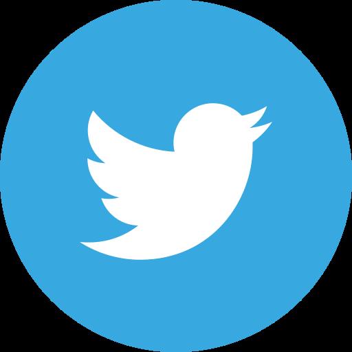 Twitter Microsystem
