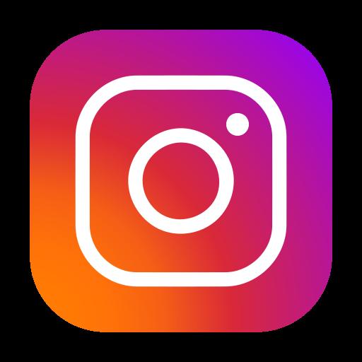 Instagram Microsystem